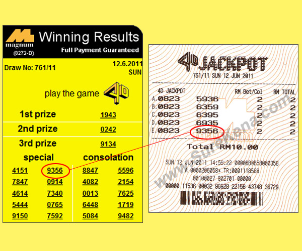betting the lottery essay